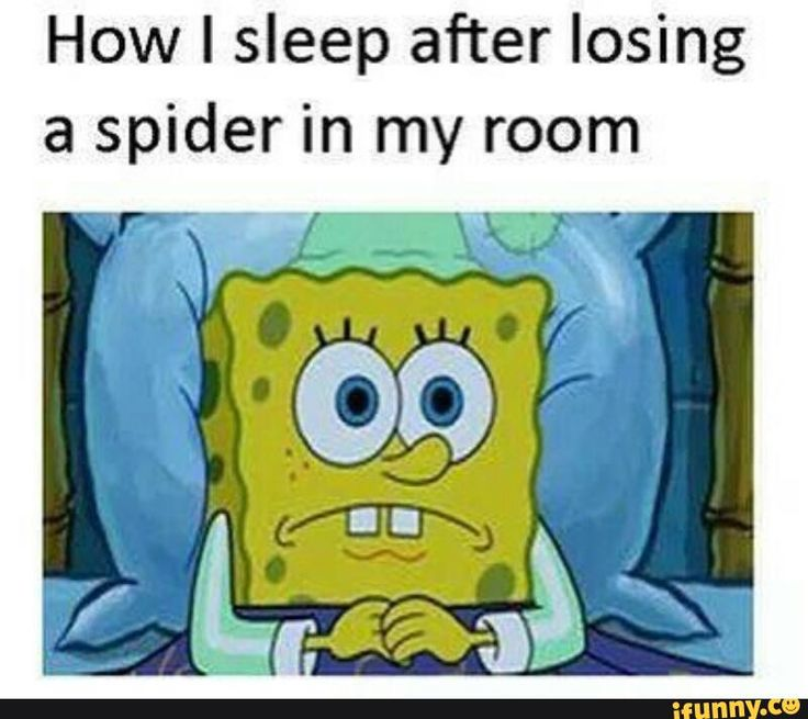 sleep after losing spider